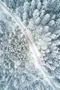 Фотография Дороги Леса Зимние Сверху Снег Природа