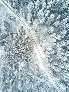Фотография Дороги Леса Зимние Сверху Снегу Природа