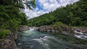 Фотография Россия Река Леса Primorsky Kray Природа