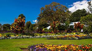 Фотография Великобритания Сады Газоне Уэльс Swansea Botanic Gardens Природа