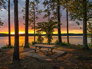 Картинка Штаты Озеро Рассветы и закаты Деревьев Стола Скамья Ствол дерева West Point Lake Georgia Природа