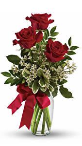 Фотография Букеты Розы Ваза Бордовый Бантик Белый фон Цветы
