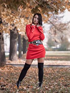 Фото Поза Платье Ног Листья Stefania