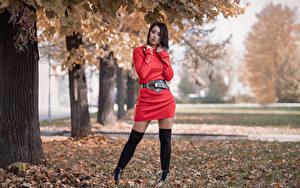 Фото Поза Платье Ног Листья Stefania молодые женщины