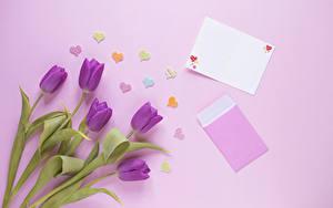 Фото Тюльпаны Цветной фон Шаблон поздравительной открытки Фиолетовый Сердечко Цветы