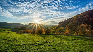Фото Германия Пейзаж Рассветы и закаты Небо Осенние Облака Солнце Деревья Трава Olsberg Природа