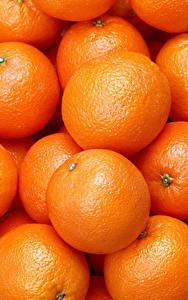 Фотографии Текстура Цитрусовые Апельсин Много
