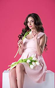 Фотография Тюльпаны Цветной фон Брюнеток Улыбка Сидя Платье Девушки