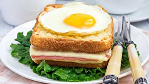 Картинки Бутерброды Хлеб Тарелка Яичница Пища