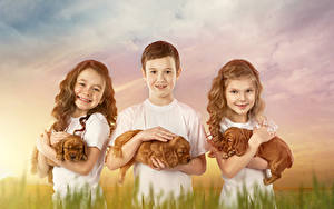 Фотография Собаки Трое 3 Девочки Мальчики Щенков Смотрит Дети