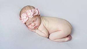 Фото Сером фоне Младенцы Спящий