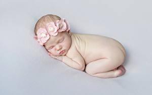 Фото Сером фоне Младенцы Спящий ребёнок