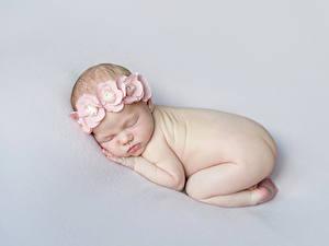Фото Сером фоне Грудной ребёнок Спящий ребёнок