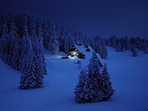 Фотографии Зима Леса Здания Снег Ночью Ель Природа