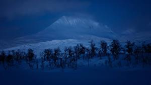 Обои Зимние Горы Снега Дерева Ночные Природа