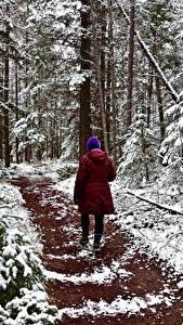 Фото Леса Зимние Тропинка Гуляет Снег