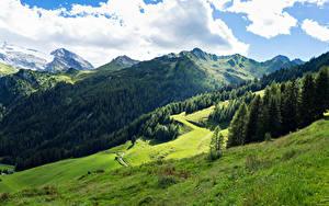 Фотографии Австрия Гора Лес Луга Альпы Облачно Tyrol Природа