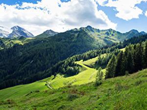 Фотографии Австрия Горы Леса Луга Альпы Облачно Tyrol Природа