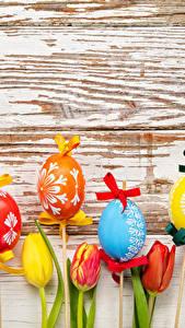 Картинки Праздники Пасха Тюльпаны Яйцами Доски Бант Дизайн цветок