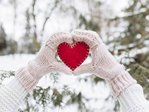 Фото Зимние День святого Валентина Сердце Руки Рукавицы