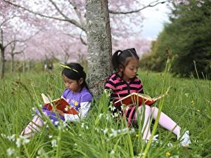 Обои Азиаты Ствол дерева Девочки Книга Сидит Двое Трава Дети