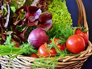 Фото Овощи Укроп Лук репчатый Помидоры Корзинка Пища