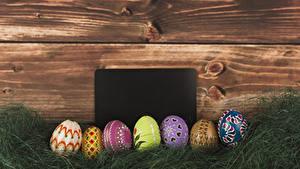 Фотография Праздники Пасха Доски Шаблон поздравительной открытки Трава Яйца Дизайн