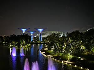 Картинка Сингапур Сады Ночь Деревья Gardens by the Bay Природа