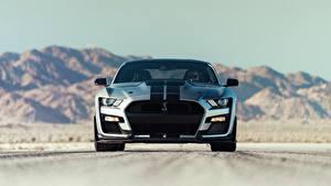 Картинка Ford Спереди Полоски Mustang Shelby GT500 2020