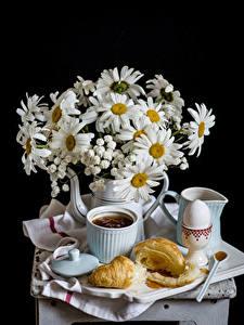 Фотографии Натюрморт Букеты Ромашки Круассан На черном фоне Чашка Яйцо Продукты питания Цветы