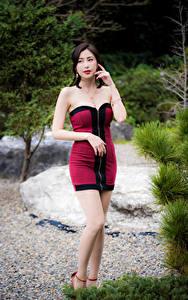 Фотография Азиаты Позирует Платья Ног девушка