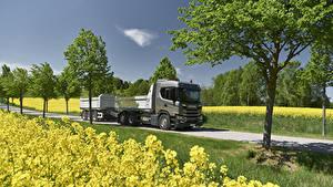 Фотографии Сканиа Грузовики 2017 G 500 6×2 rear-steer tipper with trailer Авто