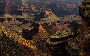 Фотографии США Гранд-Каньон парк Парки Скала