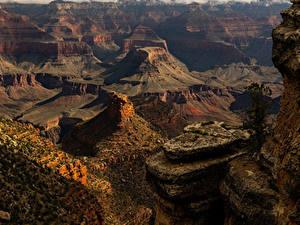 Фотографии США Гранд-Каньон парк Парк Скала Природа