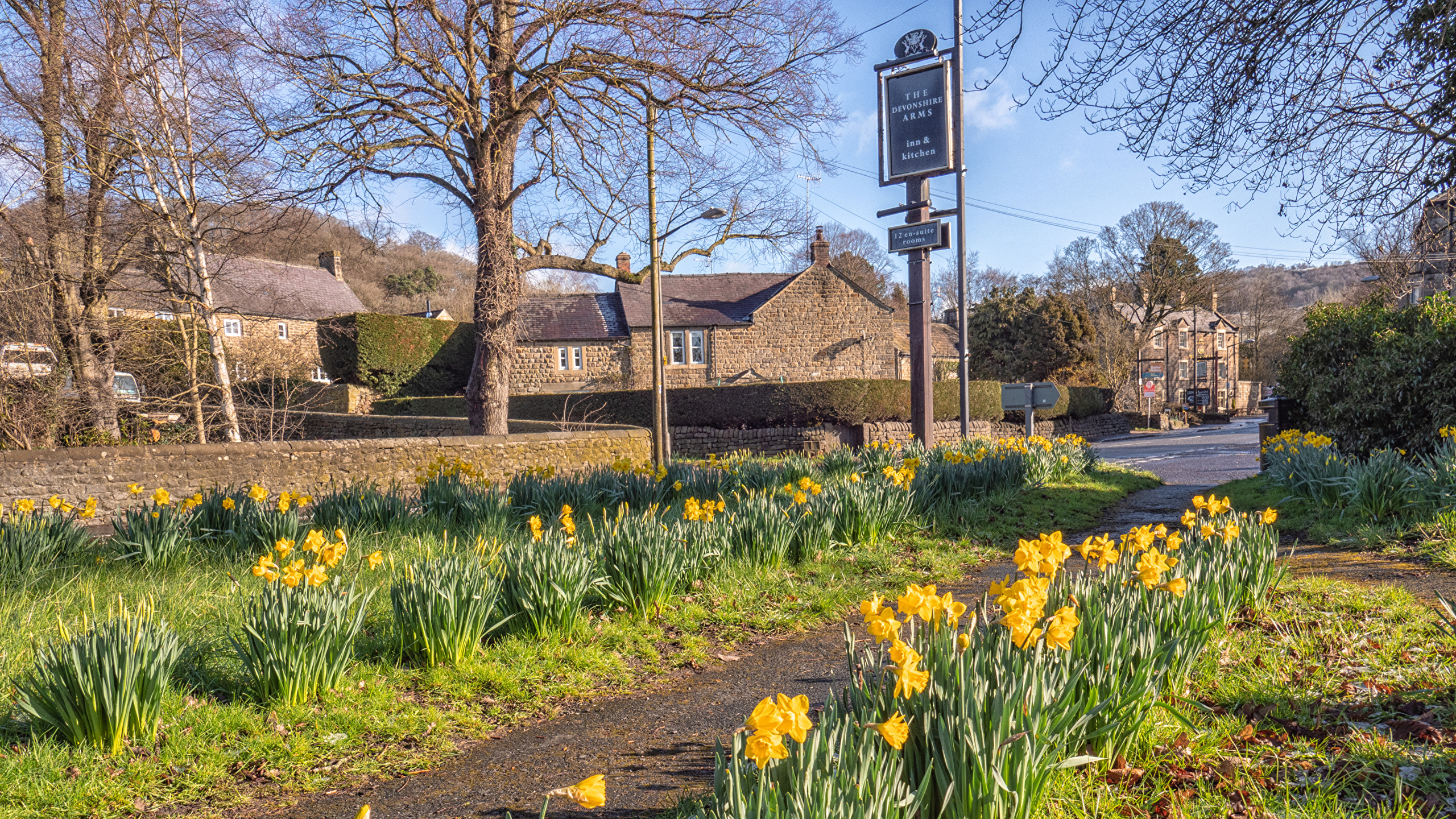 Картинки Великобритания Baslow Derbyshire весенние улице Нарциссы Города Здания 2560x1440 Весна улиц Улица Дома