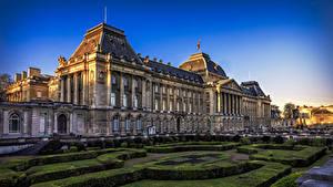 Обои Бельгия Дома Вечер Ландшафтный дизайн Дворец Кусты Royal Palace Brussels Города