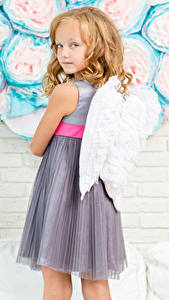 Картинка Ангелы Стены Девочки Крылья Смотрят Платье Дети