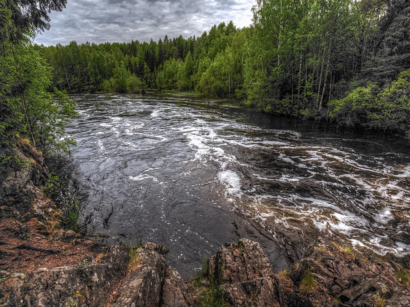 Картинки Россия Suna River Republic of Karelia Природа Леса Реки 1600x1200 речка