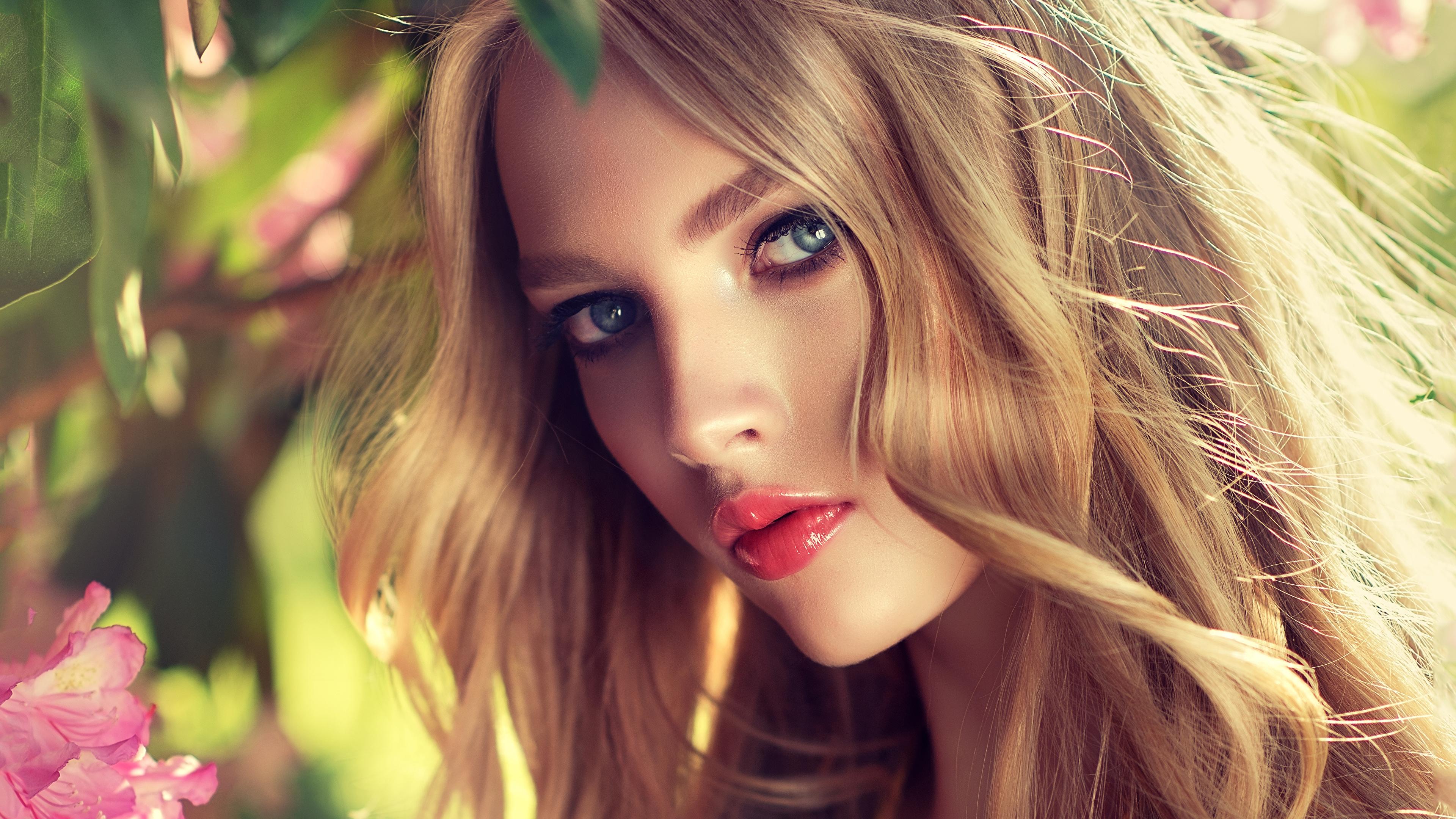 Фото Русые Блондинка Красивые Лицо Девушки смотрит 3840x2160 Взгляд