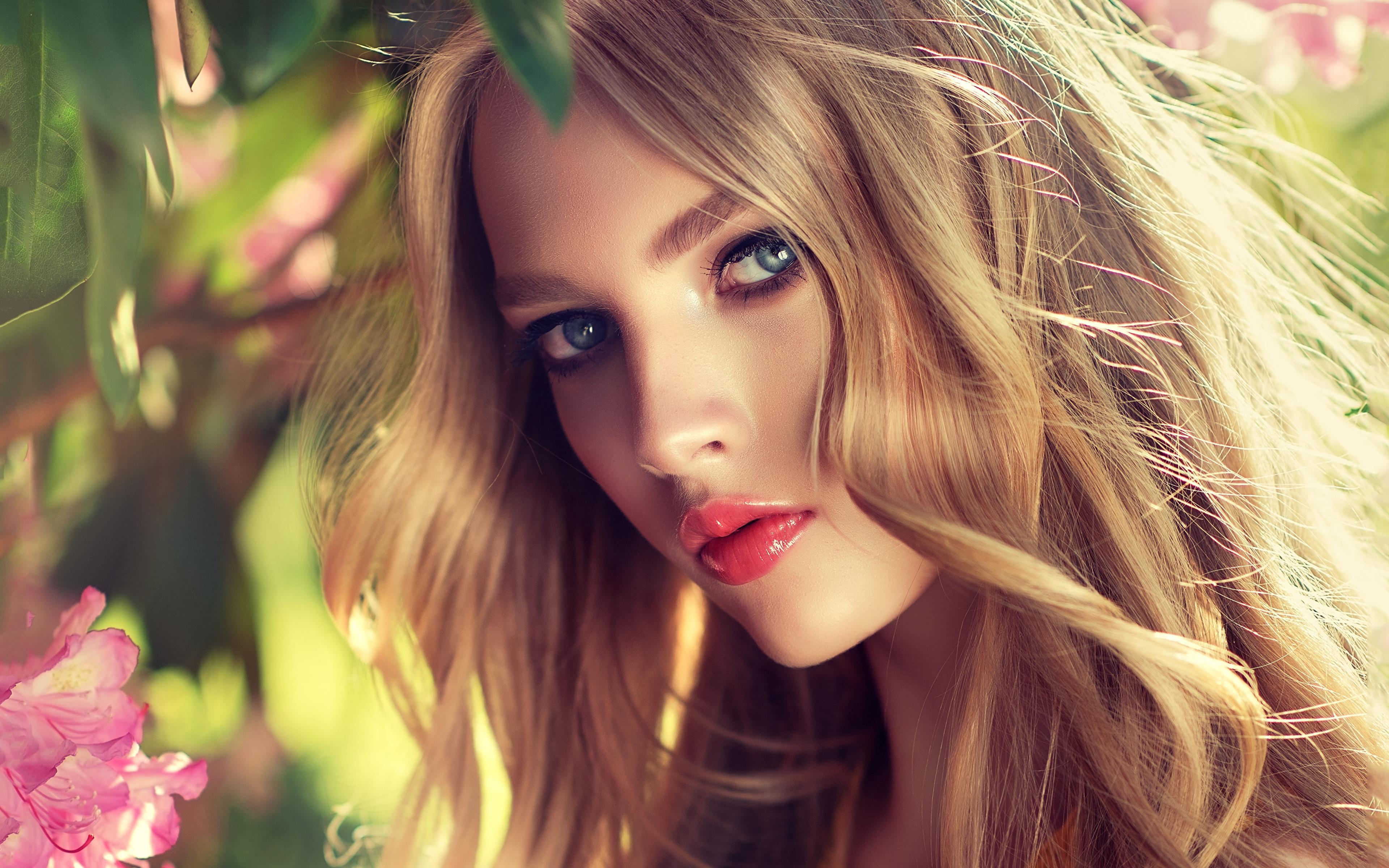 Фото Русые Блондинка Красивые Лицо Девушки смотрит 3840x2400 Взгляд