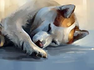 Картинка Собаки Рисованные Сон Лап Хаски Животные