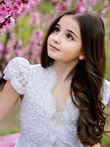 Фотография Цветущие деревья Девочки Руки Красивые Ребёнок