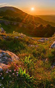 Картинки Россия Крым Осенние Рассветы и закаты Камень Холмы Трава Солнце