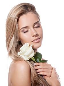 Картинка Розы Блондинка Белый фон Красивые Девушки