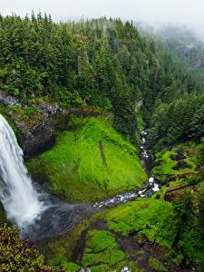Картинки Водопады Штаты Утес , Andrew Coelho, Salt Creek Falls