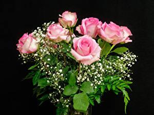 Фотография Букеты Розы Черный фон Розовая Цветы