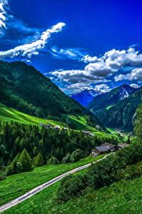 Фотография Италия Гора Лес Небо Пейзаж Траве Облако Bolzano Природа