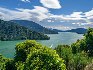 Фотография Новая Зеландия Пейзаж Горы Речка Кустов Облачно Cullen Point Lookout Havelock Природа