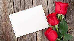 Фотография День святого Валентина Розы Доски Шаблон поздравительной открытки Красный