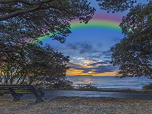 Фотографии Англия Побережье Рассветы и закаты Радуга Скамейка Ветка Christchurch Природа